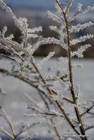 freeze_13