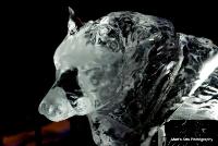 icekingdom_14