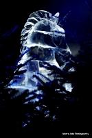 icekingdom_18