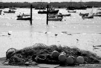 Mersea Island 2012