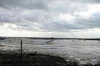 Mersea Island Feb '16