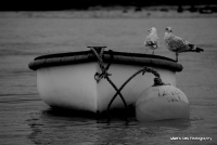 Orford_10