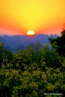 sunrise_13