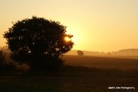 sunrise_31