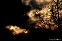 sunsets_1