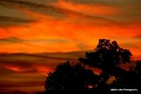 sunsets_27