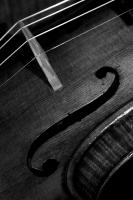 violin_3