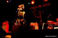 Adam Ant 2011.